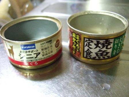 2006_0916junichibi0013