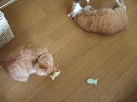 2006_0921junichibi50034
