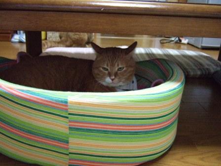 2006_0926junichibi80017