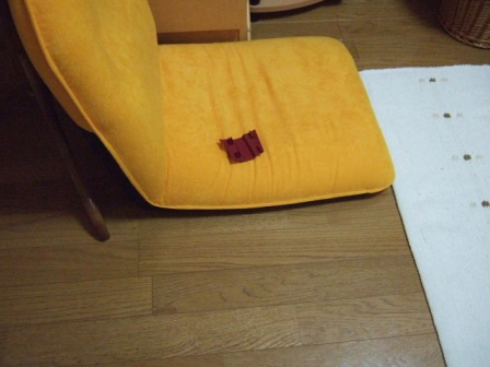2006_1004junichibi110009