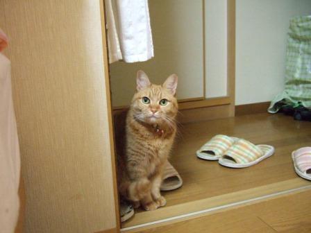 2006_1024junichibi210049
