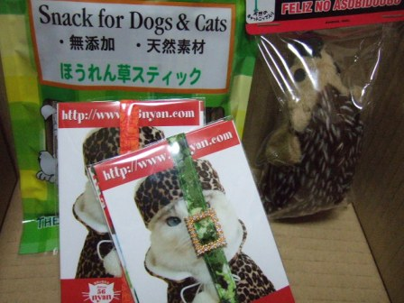 2006_1201junichibi390043