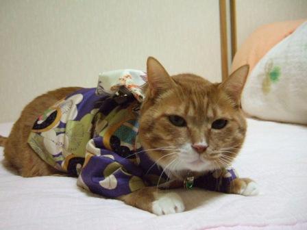 2006_1223junichibi470066