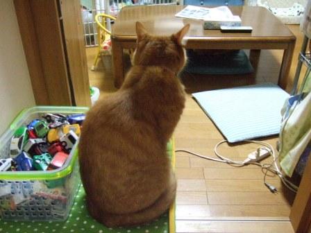 2007_junichibi1370121