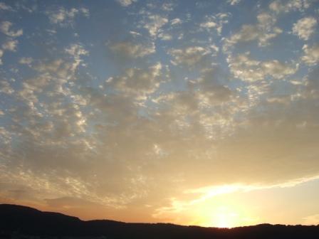 2007_junichibi1420082