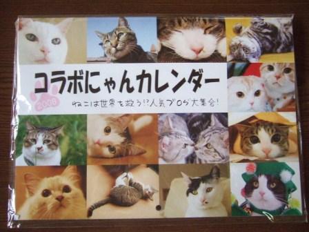 2007_junichibi1490079