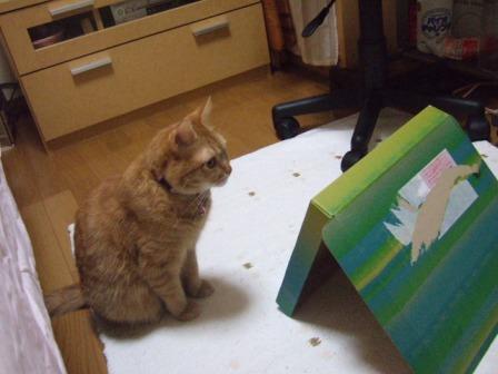 2007_junichibi1500104
