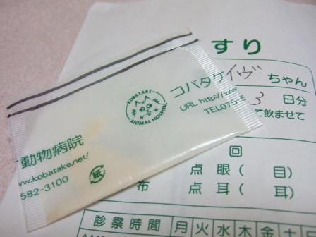 2007_junichibi1520193