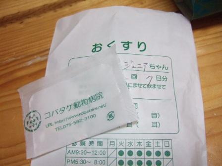2007_junichibi1590171