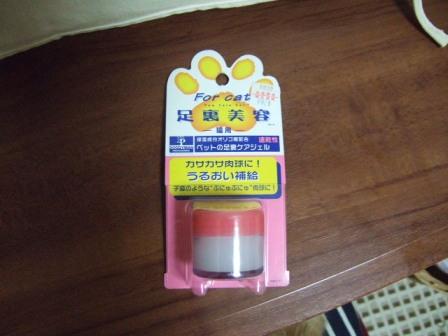 2007_0106junichibi510282