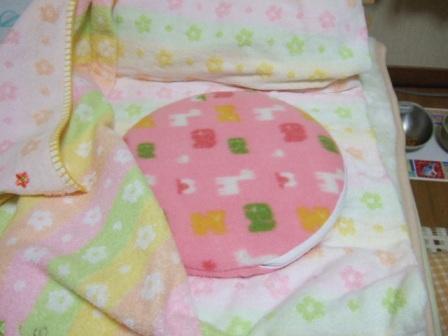 2007_0108junichibi520372