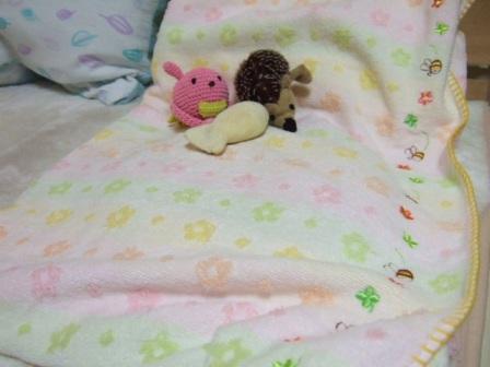 2007_0108junichibi520406