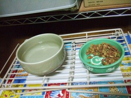 2007_0108junichibi520409