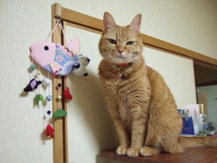 2007_0109junichibi530429_1