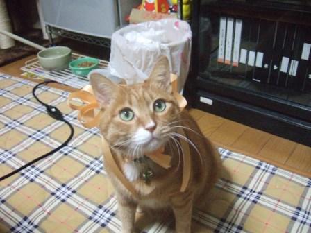 2007_0114junichibi540543