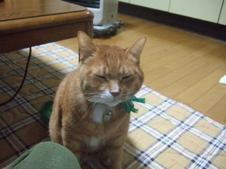 2007_0119junichibi550571