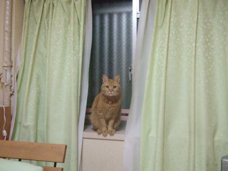 2007_0119junichibi550575