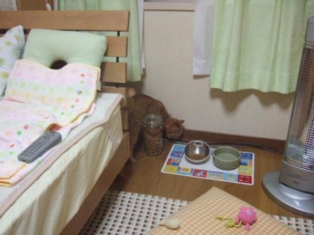 2007_0119junichibi550580