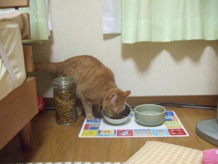 2007_0119junichibi550582