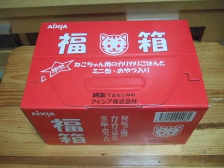 2007_0119junichibi550585