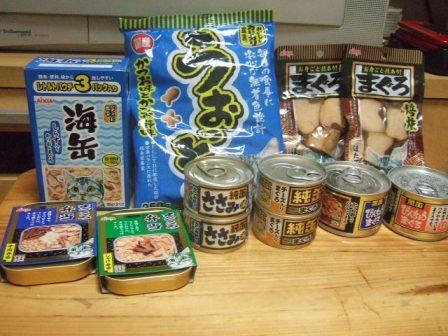 2007_0119junichibi550588