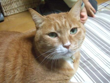 2007_0119junichibi550656
