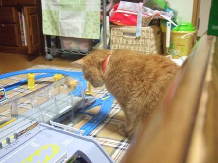 2007_0211junichibi590093