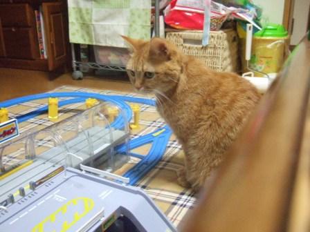 2007_0211junichibi590095