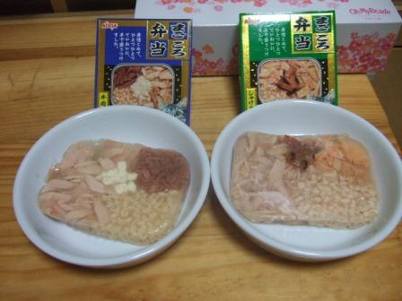 2007_0222junichibi620145_1