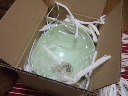 2007_0406junichibi770031