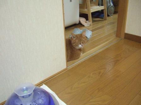 2007_junichibi1090026