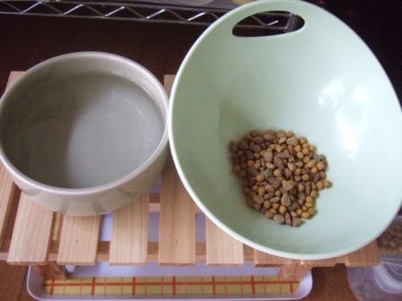 2007_junichibi910332