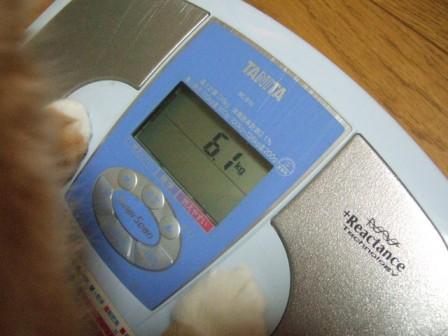 2007_junichibi990205