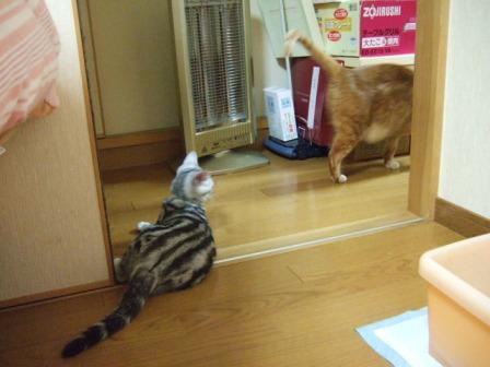 2007_junichibi1640191