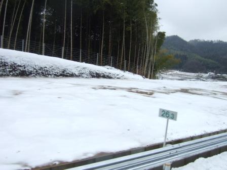 2008_junichibi1720090
