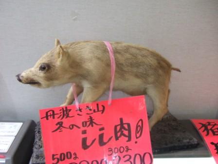 2008_junichibi1720109