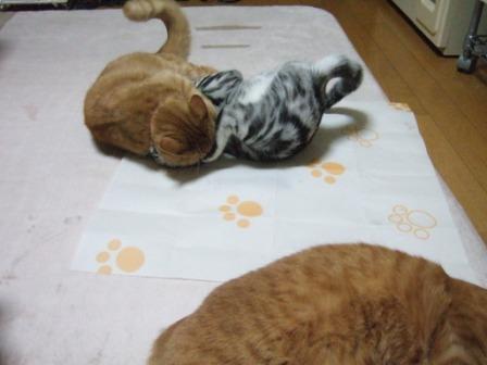 2008_junichibi1810022