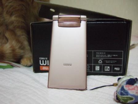 2008_junichibi1910042