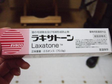 2008_junichibi1930086