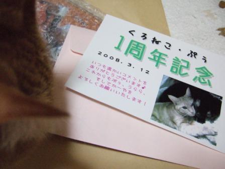 2008_junichibi1940099
