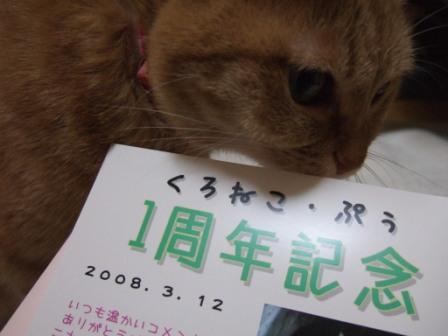 2008_junichibi1940101