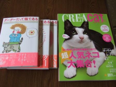 2008_junichibi1960007