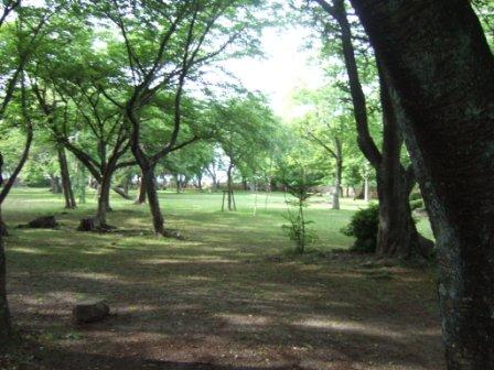 2008_junichibi2070125