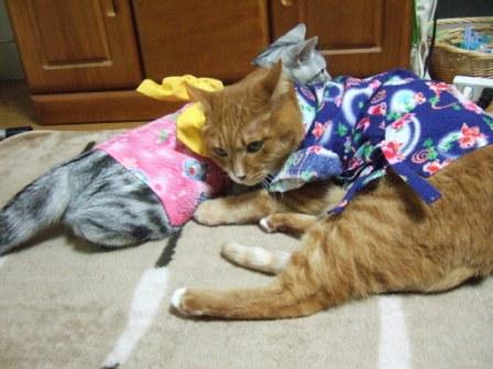 2008_junichibi2090108