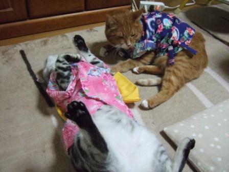 2008_junichibi2090112