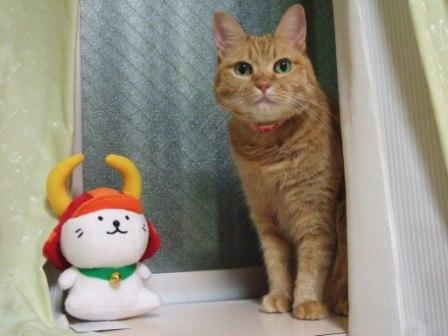 2008_junichibi2220025