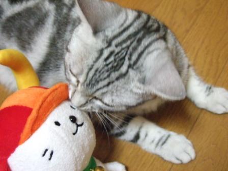 2008_junichibi2220032