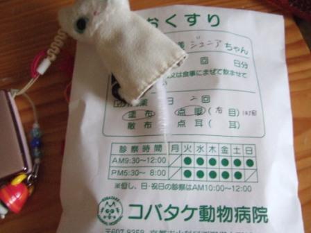 2008_junichibi2250023
