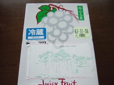 2008_junichibi2290075