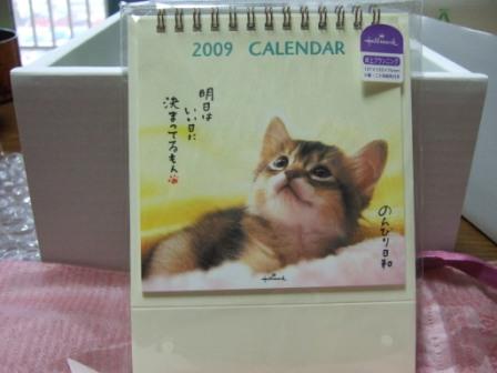 2008_junichibi2290079